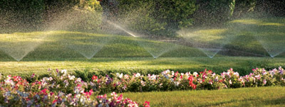 Aeration Services - Image